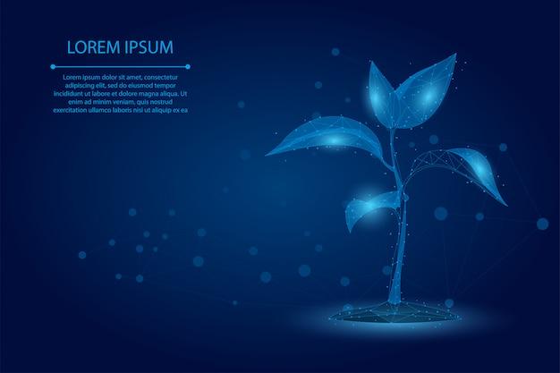 Абстрактная линия месива и завод ростка пункта экологическая абстрактная концепция. сохранить планету и природу, окружающую среду многоугольника