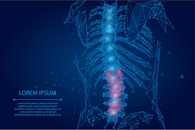 Abstract mesh line and dot physiotherapy human spine. polygonal render female back hernia