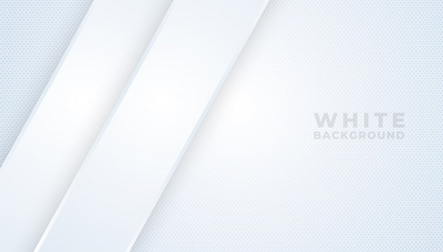Abstract modern line gradient white and gray backgrounds