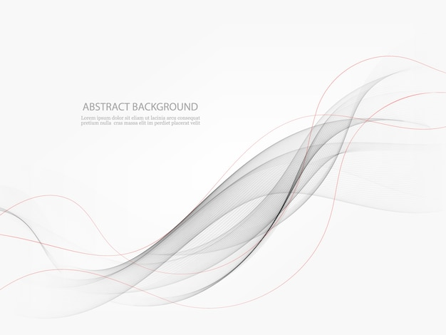 Abstract modern transparent gray certificate  with swoosh speed lines.  illustration