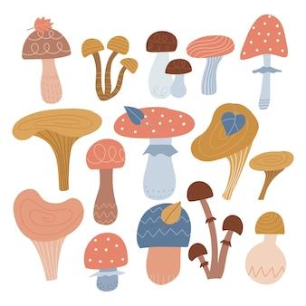 抽象的なキノコは、さまざまな種類のキノコの秋の気分手描きの大きなベクトルコレクションを設定します...