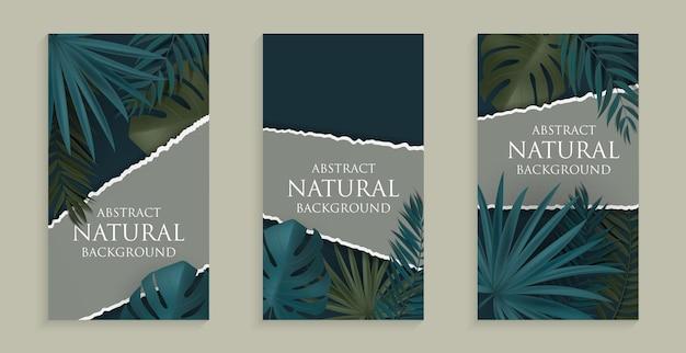 ソーシャルネットワークの物語のための熱帯のヤシとモンステラの葉の抽象的な自然の背景