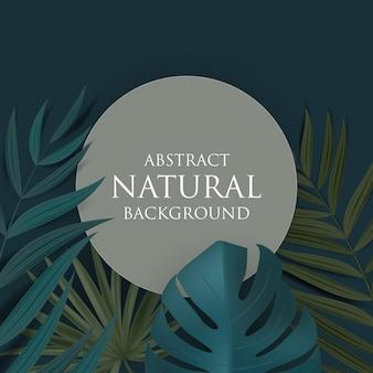 Abstract natural background with tropical palm and monstera leaves