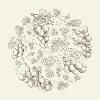 Abstract natural floral vintage composition with grapes bunches in hand drawn style on light