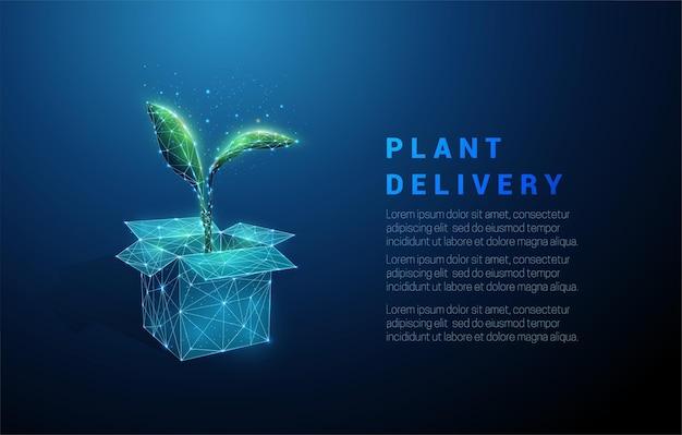 抽象的なオープンボックスと緑の植物。植物の配達。低ポリスタイルのデザイン。幾何学的な背景。ワイヤーフレームライト接続構造。現代のコンセプト。孤立