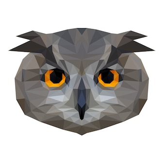 Abstract owl head.  low poly owl portrait.