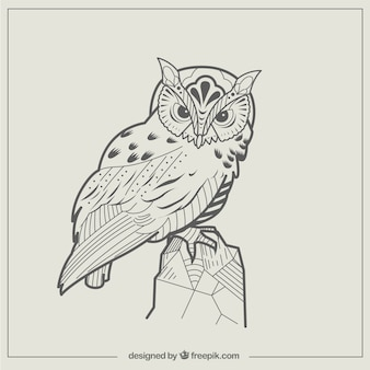 Abstract owl illustration