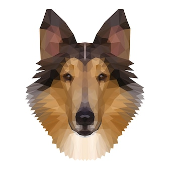 Abstract polygonal collie head. modern low poly collie portrait pattern background for design t shirt, veterinary clinic poster, gift card, bag print, art workshop advertising etc.