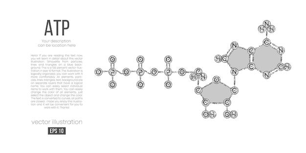 Абстрактный многоугольный силуэт молекулы атп кислоты