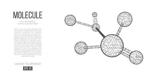 분자의 추상 다각형 실루엣