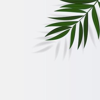 抽象的でリアルなグリーンパームリーフトロピカル