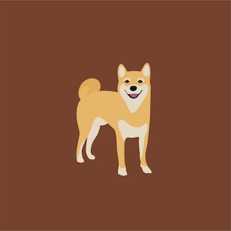 Abstract shiba inu puppy