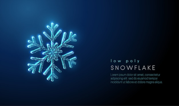 Abstract snowflake. low poly style design. abstract geometric background