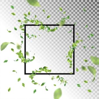 飛んでいる葉と抽象的な正方形のフレーム