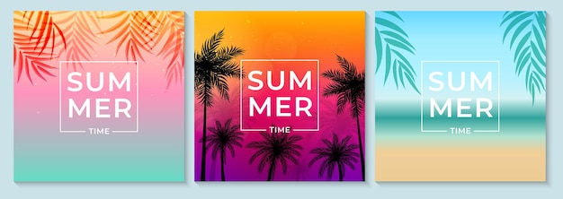 Abstract summer background set with palm leaves, beach and seaside.