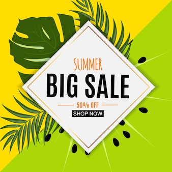 Abstract summer sale background with fresh fruits
