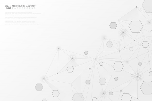 Abstract technology gray geometric hexagon lines connection on white background