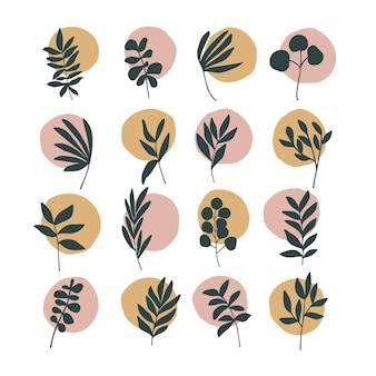 抽象流行の植物画セット。アートモダンプリント、自由奔放に生きる家。ストーリー、ハイライト。インテリアデザインの要素。白で隔離される植物。スカンジナビアのミニマリストスタイル。