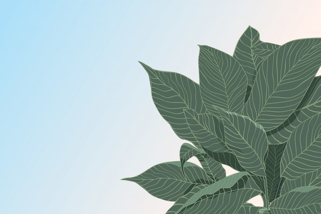 Abstract vector background with sketch of green leafs isolated, flat lay. nature concept