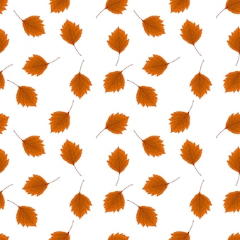 Abstract vector illustration autumn background with falling autumn leaves. seamless pattern. eps10