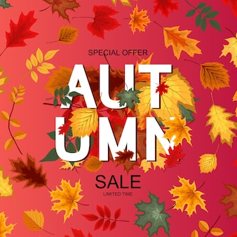 抽象的なベクトル図秋の販売の背景と秋の紅葉。 eps10