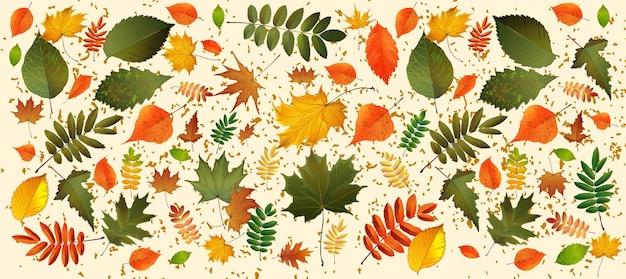떨어지는 단풍과 추상적인 벡터 일러스트 배경입니다. eps10. 가 잎 가로 배경입니다. 소셜 미디어 게시물에 적합