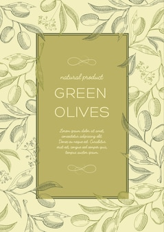 Abstract vintage natural green poster with text in frame and olives tree branches