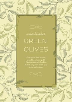 Абстрактный старинный естественный зеленый плакат с текстом в рамке и ветвях оливковых деревьев