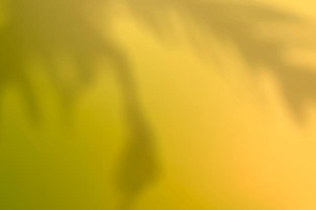 식물 그림자와 추상 노란색 그라데이션 배경 벡터 무료 벡터