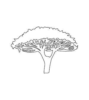 아카시아 우산 나무 한 라인 아트 식물의 연속 라인 식물 바오밥 사바나