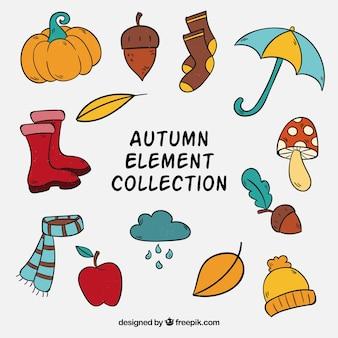 Accessori e raccolti di elementi naturali di autunno
