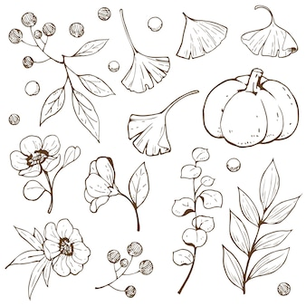 Accessory autumn doodle outline