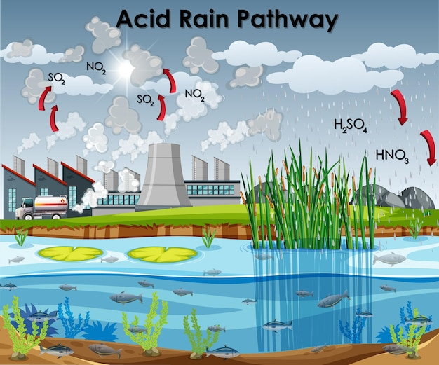 Acid rain pathway diagram with water and factory