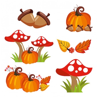 Acorns pumpkin mushroons and leaves falling