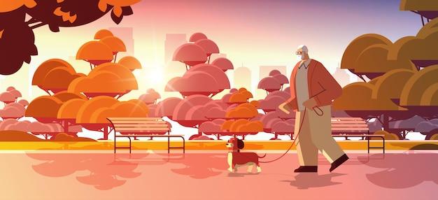 彼の小さな犬の祖父と一緒に公園を歩いているアクティブな年配の男性は、ペットの夕日の街並みの背景の水平方向の完全な長さのベクトル図でリラックス