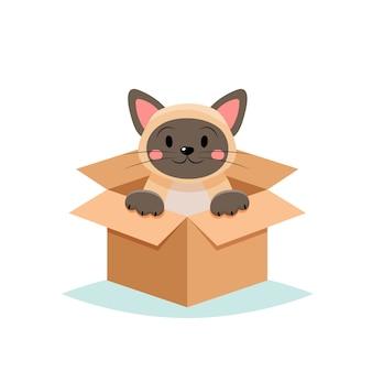 ペット-白い背景の上のボックスでかわいい猫を採用します。