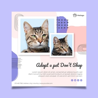 Принять квадратный флаер для домашних животных