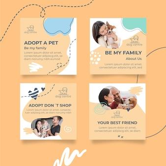 애완 동물 인스 타 그램 포스트 컬렉션을 채택