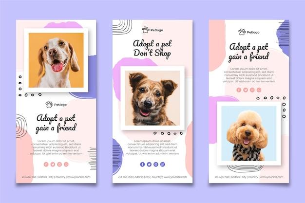 Принять рассказы инстаграм домашних животных