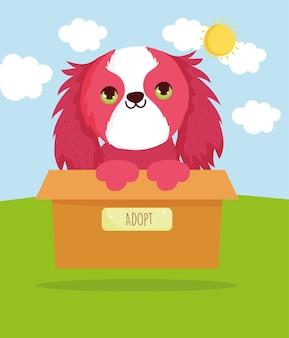 かわいい犬を採用