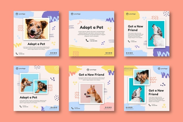 Adopt a pet instagram posts collection