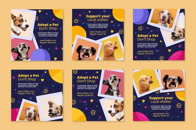 Adopt a pet instagram posts