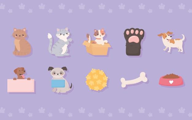 養子縁組のペットやおもちゃ