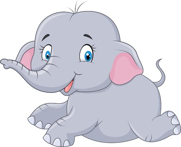 Adorable baby elephant running isolated on white background