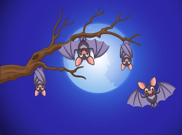 Adorable bat cartoon sleeping and flying