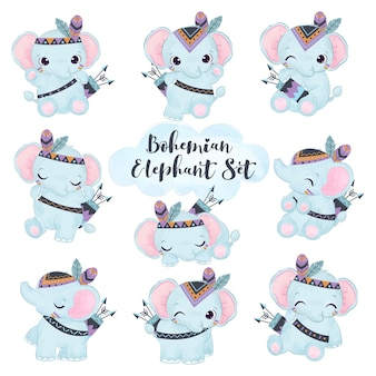 Adorable boho elephant illustration set
