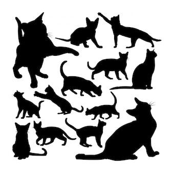 愛らしいビルマ猫動物のシルエット