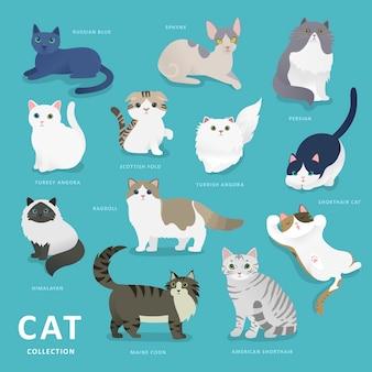 Коллекция очаровательных пород кошек в плоском стиле