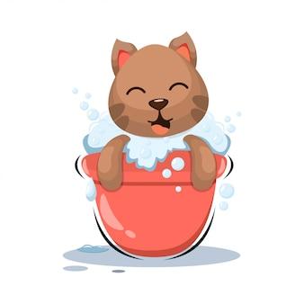 Adorable cat shower with bucket cartoon
