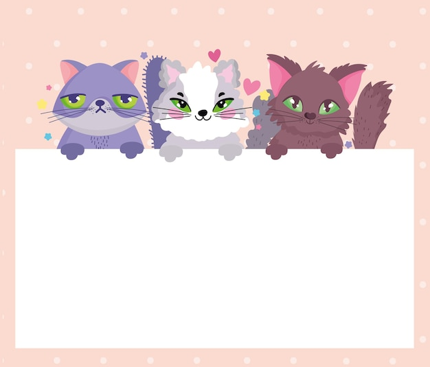 Очаровательные кошки домашних животных с баннером векторные иллюстрации